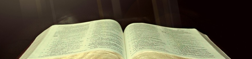 Ministries and Bible Studies